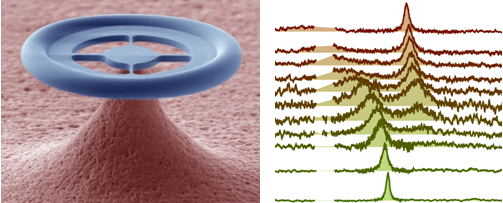 quantumcoherentcoupling